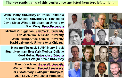 http://mahaprabhu.net/satsanga/wp-content/uploads/2010/01/Key_Participants.PNG